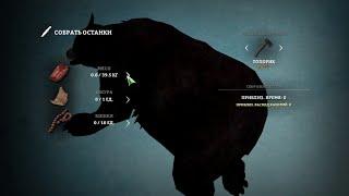 Как убить медведя в The Long Dark