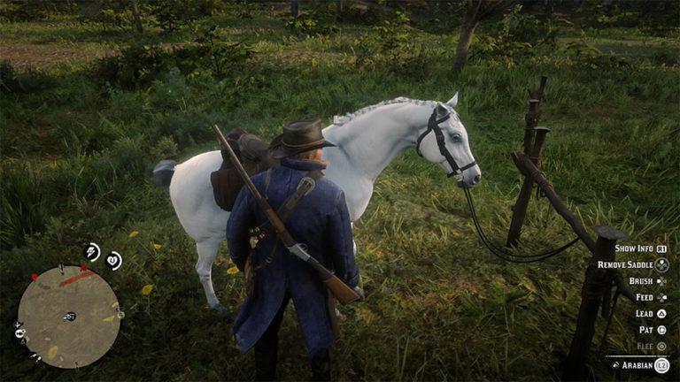 Где найти лучшую лошадь в Red Dead Redemption 2